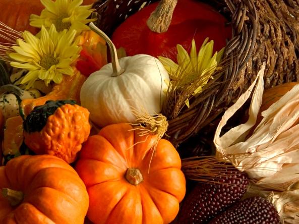 感恩节快乐, happy thanksgiving
