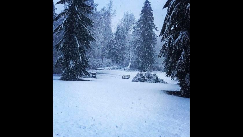 snow14
